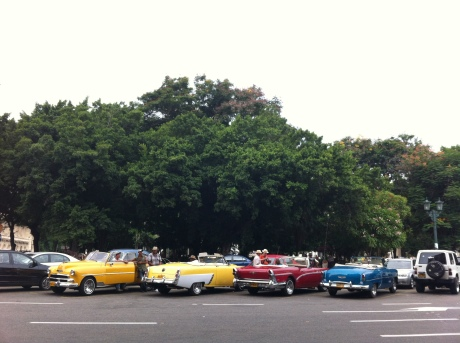 Say hello to the '50s. Vintage cars and taxis lined up in Havana, Cuba. Photo credit: Tazi Phillips