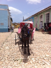 Horse and buggy suffering under the hot sun on the cobblestone streets of Trinidad, Cuba. Photo credit: Tazi Phillips